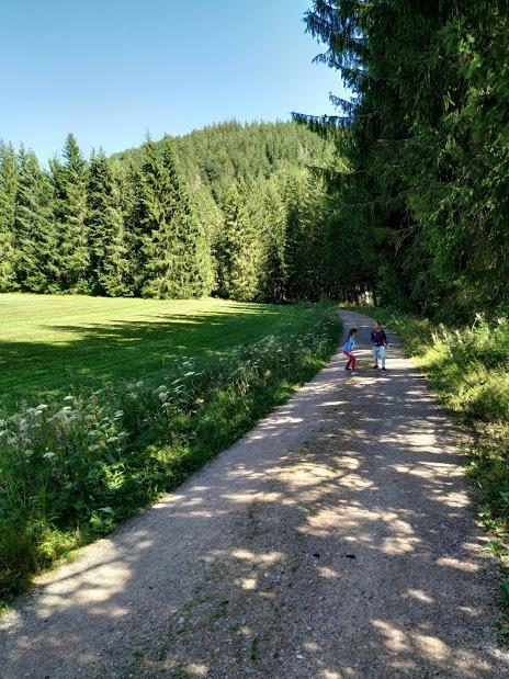 buscando a Caperucita en el camino entre el lago Schluchsee y Windgfällweiher - fotografia : Telar de Libros