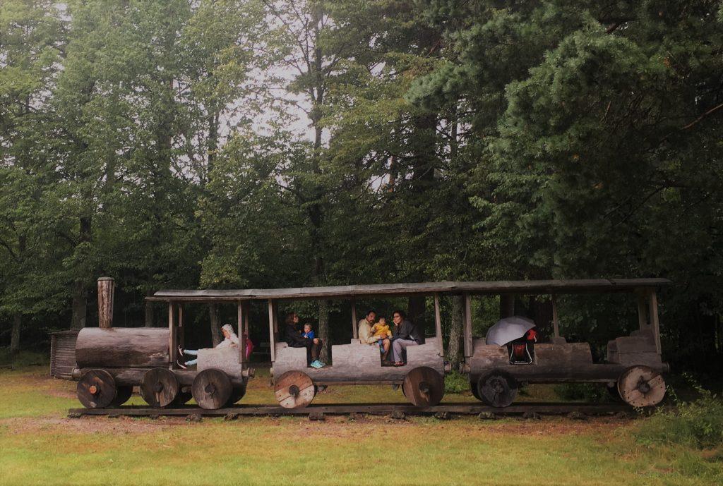 bajo la lluvia en el tren de la reserva Wildgehege Salvest - fotografía: Telar de Libros